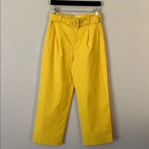 Anthropologie High Waisted Belted Pants